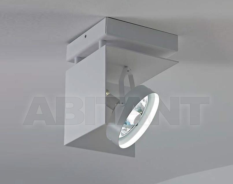 Купить Светильник-спот Antonangeli Indoor timeLS3 C1
