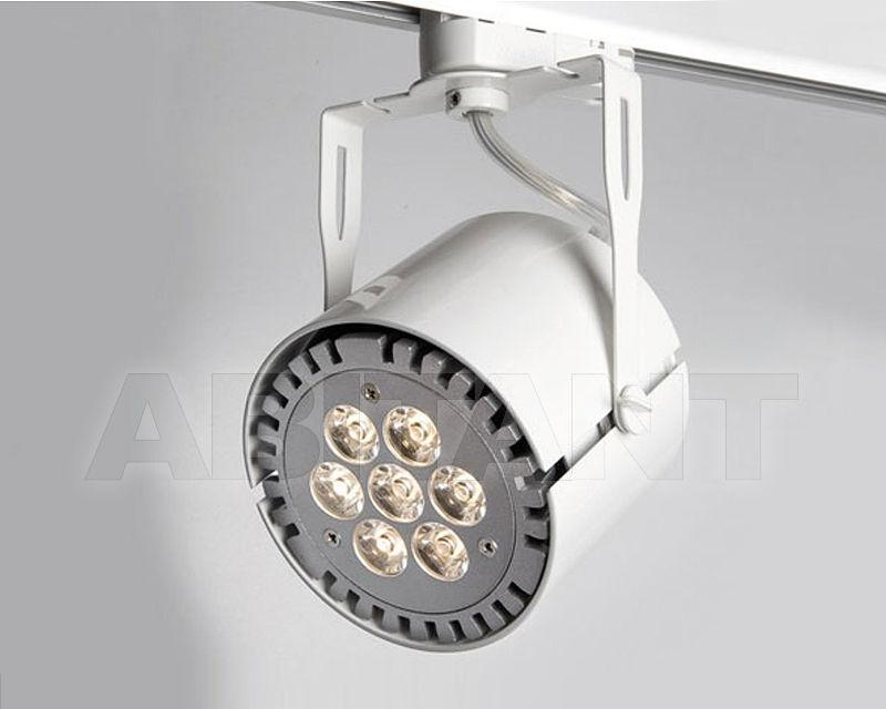 Купить Светильник-спот Molto Luce G.m.b.H. Illuminazione 522-301014