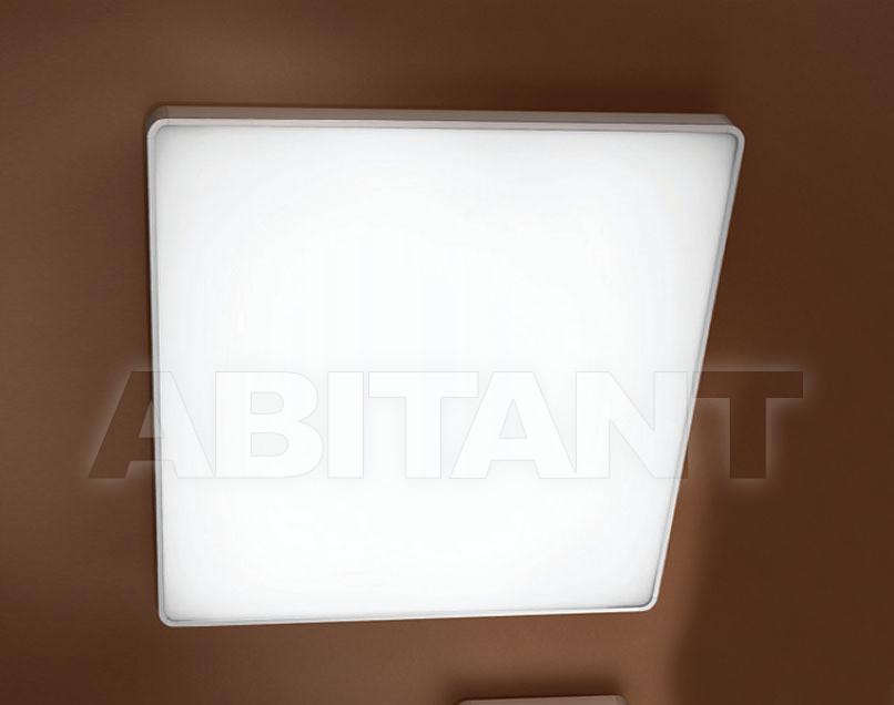 Купить Светильник Linea Light Decorative 6950