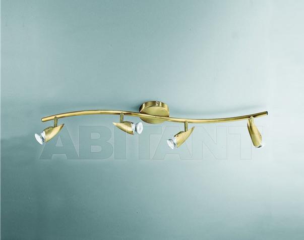 Купить Светильник-спот Rossini Illuminazione Classic 5543-4-OL