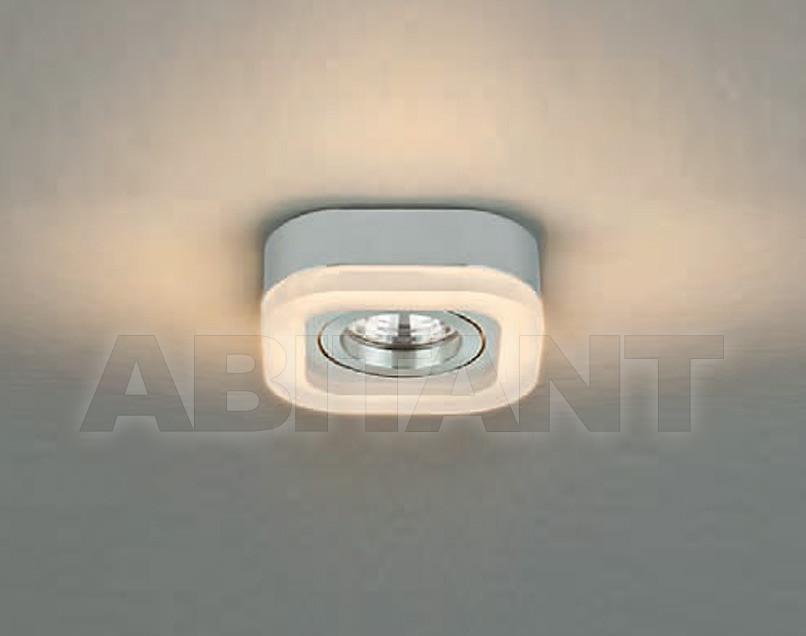 Купить Светильник Brumberg Light 20xiii 20009253