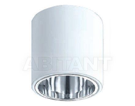 Купить Светильник точечный Brumberg Light 20xiii 460003E