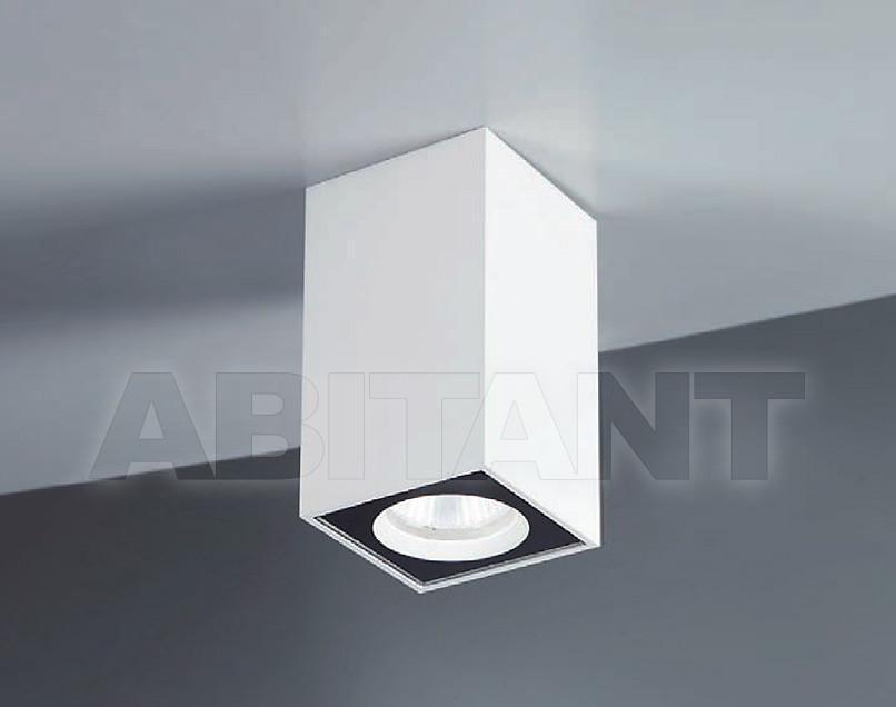 Купить Светильник Brumberg Light 20xiii O16736
