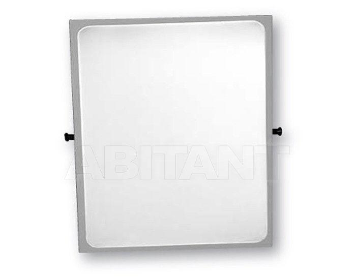 Купить Зеркало настенное Ponte Giulio Accessories & Mirrors F41JPSW125