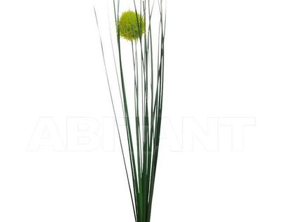 8J-16AS0001 Веточка алиума зеленая 68см (24)