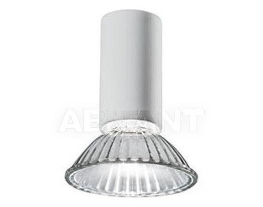 Купить Светильник точечный Vertigo Bird 2011/2012 V01017 5211
