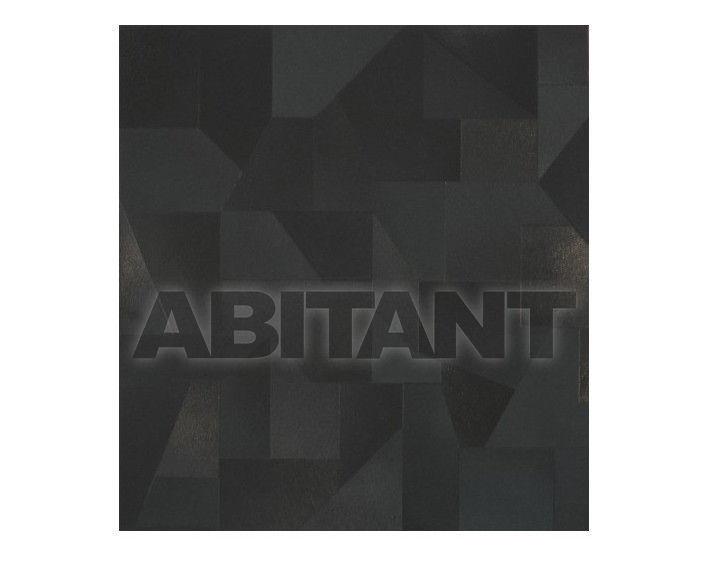 Купить Плитка напольная Seranit Seranit EVOLUTION BLACK