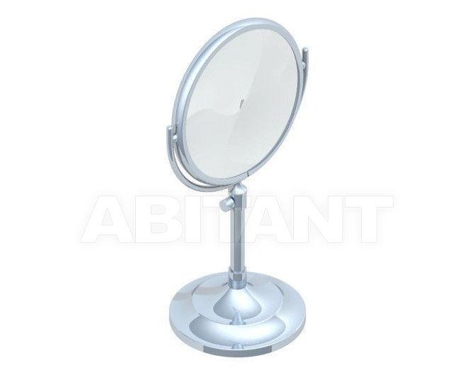 Купить Зеркало THG Bathroom G31.660 Cygne