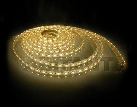 Купить Лента LED Egoluce Wall Lamps 5503.01