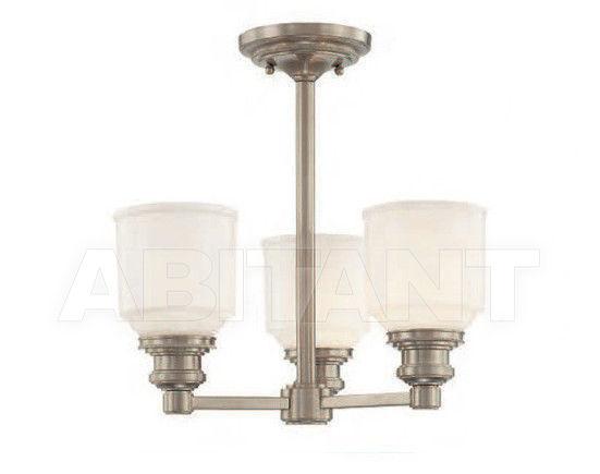 Купить Светильник Hudson Valley Lighting Standard 3413-SN