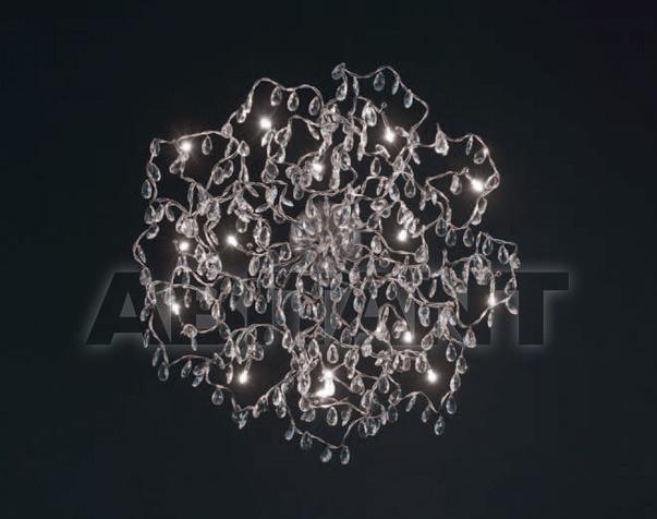 Купить Светильник настенный Harco Loor Design B.V. 2010 TIARA PL/WL 12