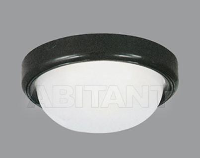 Купить Светильник Boluce Illuminazione 2013 0860.00X