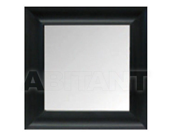 Купить Зеркало настенное Baron Spiegel Natur 50649000