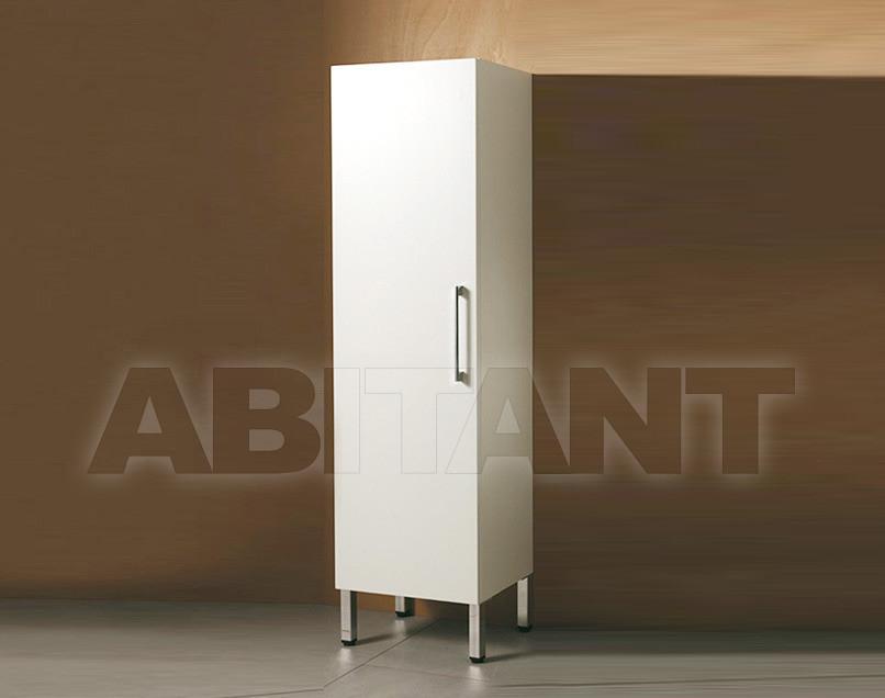 Купить Шкаф для ванной комнаты Mastro Fiore System ARM-A/P