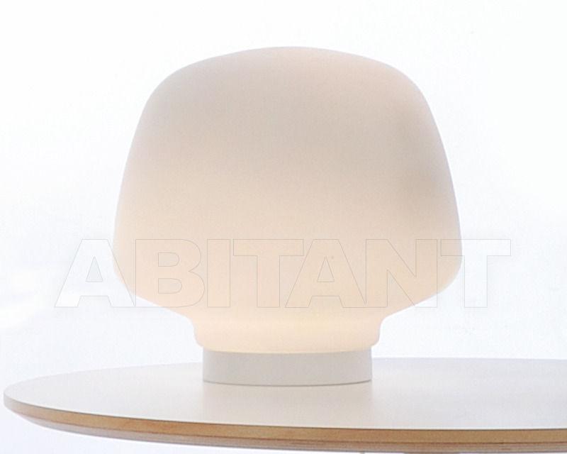 Купить Лампа настольная IAARA Fambuena 2013 F-09099-01