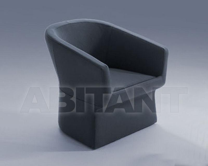Купить Кресло FEDELE Viccarbe Armchairs FE-1 2