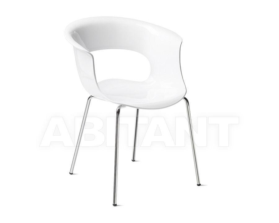 Купить Стул с подлокотниками Scab Design / Scab Giardino S.p.a. Sedute Design 2690 310