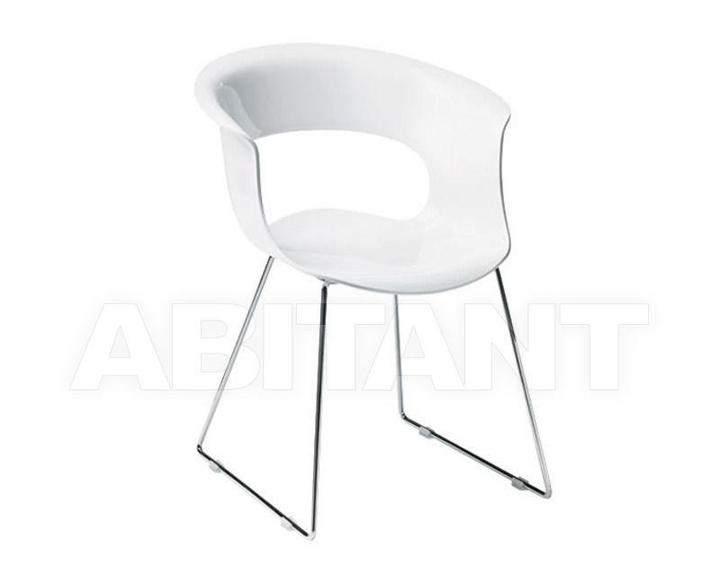 Купить Стул с подлокотниками Scab Design / Scab Giardino S.p.a. Sedute Design 2691 310