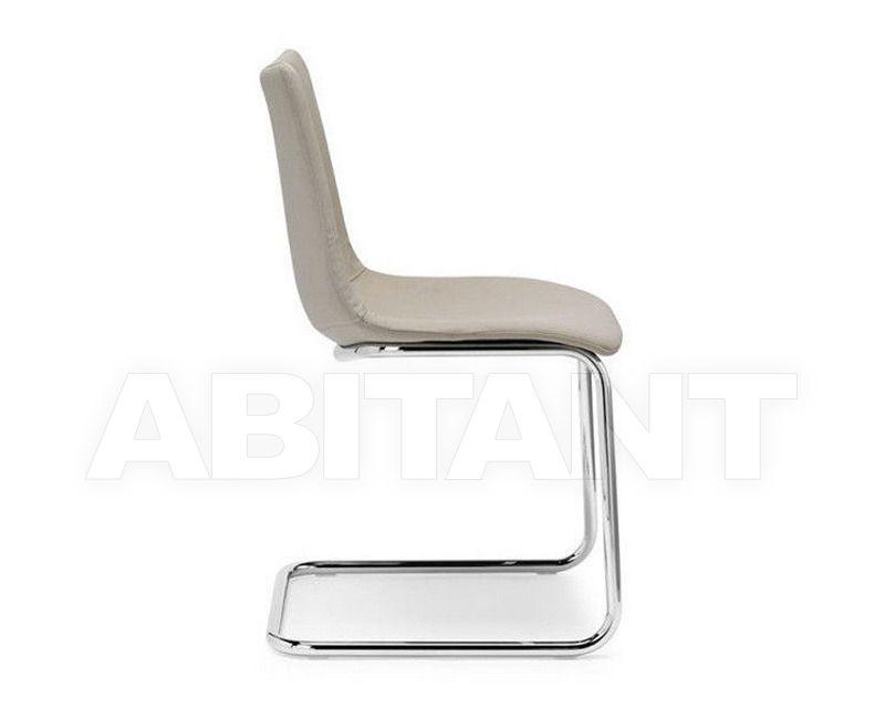Купить Стул Scab Design / Scab Giardino S.p.a. Novita Comfort 2642 T4 51