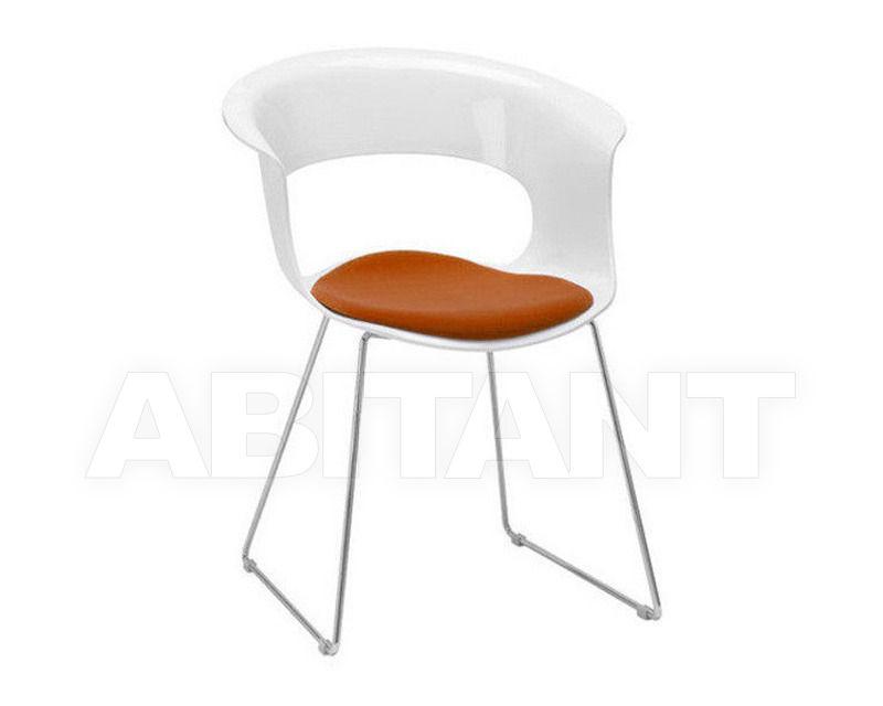 Купить Стул с подлокотниками Scab Design / Scab Giardino S.p.a. Novita Comfort 2261 310 41