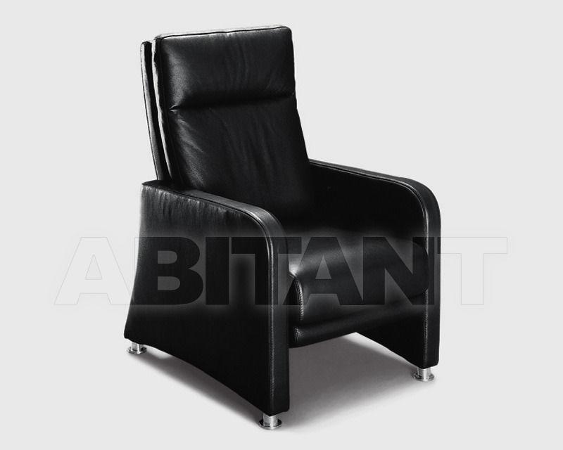 Купить Кресло Divanidea 2011 HELENA