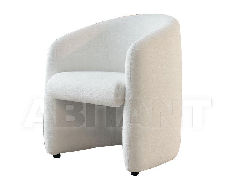 Купить Кресло Citterio Meda Chair TANIA 62PT