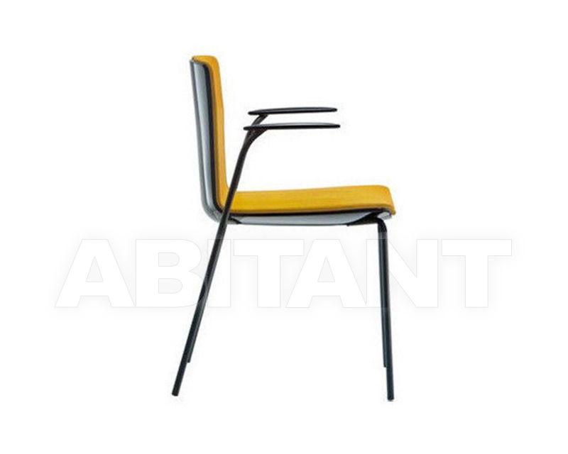 Купить Стул с подлокотниками NOA Pedrali 2012 726 2