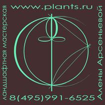 Logotip zelenyy tonkiy rekvizity tsvet 28 11 16 landshaftnaya masterskaya aleny arsenievoy med