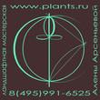 Logotip zelenyy tonkiy rekvizity tsvet 28 11 16 landshaftnaya masterskaya aleny arsenievoy small