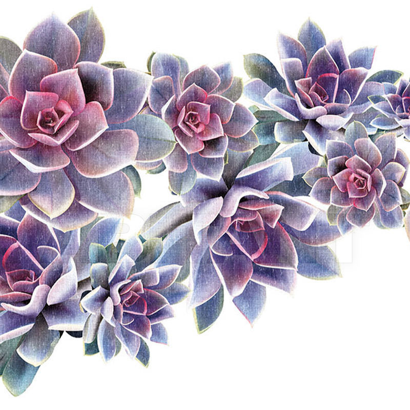 Купить Бумажные обои Desert Rose LondonArt - Grafika S.r.l.  EDEN 13 DR 01