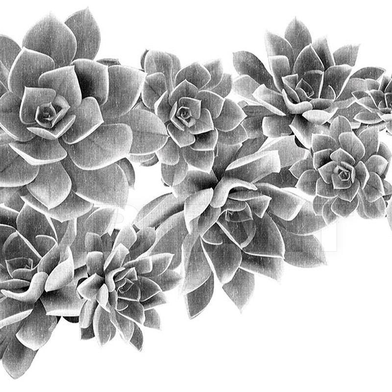 Купить Бумажные обои Desert Rose LondonArt - Grafika S.r.l.  EDEN 13 DR 02