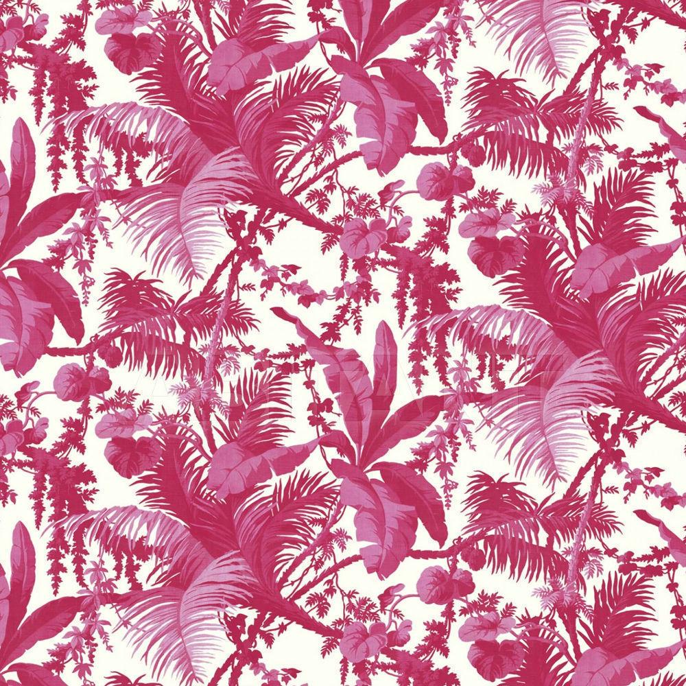 Купить Флизелиновые обои PAMPAS  Henry Bertrand Ltd Wallpaper 1-WA-PAM-DI-AZA-XXX-003