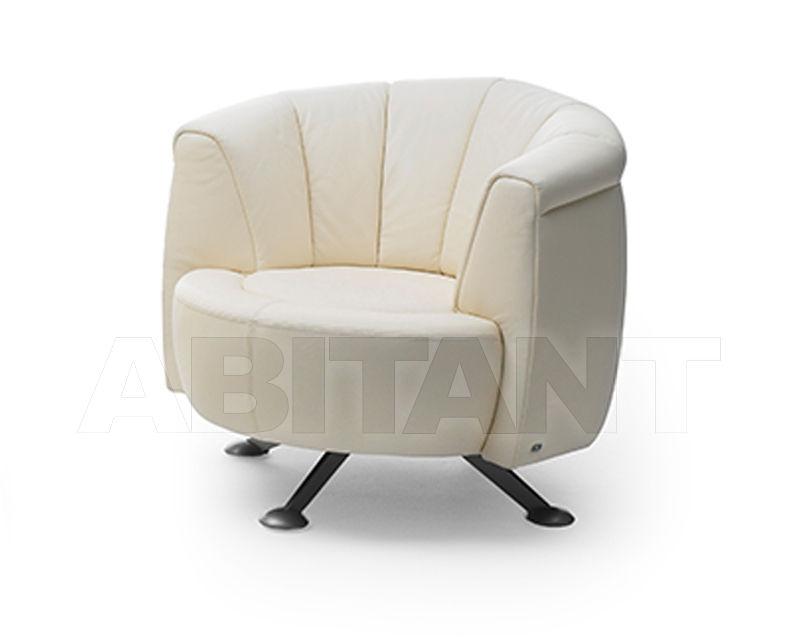 Купить Кресло De Sede 2019 DS-0164/01
