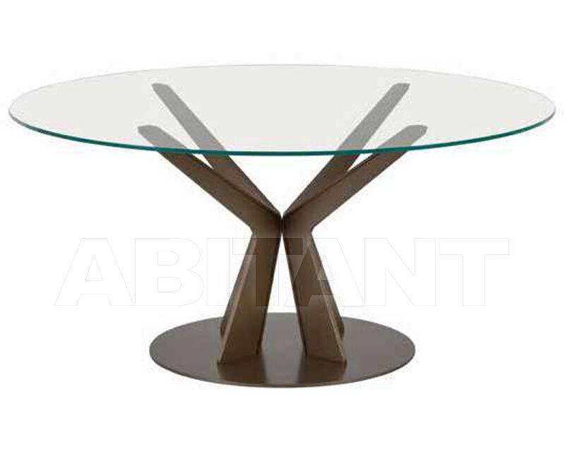 Купить Стол обеденный TREE Tonin Casa 2020 8111FS